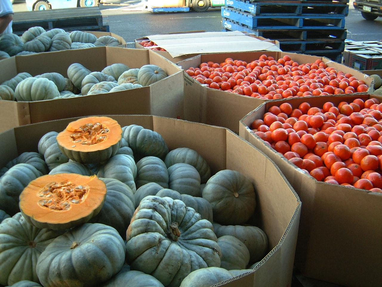 Brisbane Markets Sherwood Road Rocklea Queensland 4106 pumpkin I01