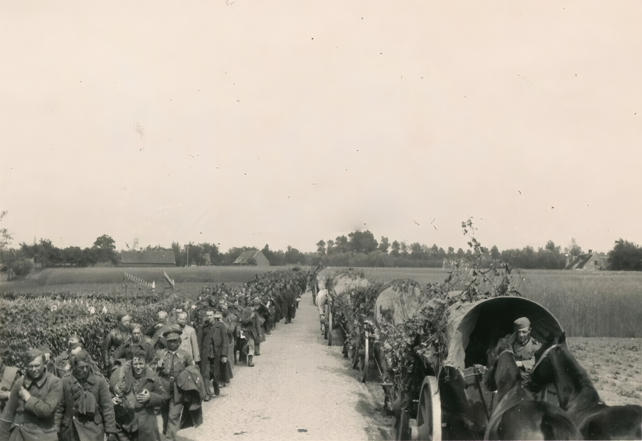 Column of French POWs being marched towards internment June 1940 ebay 01