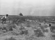 Asisbiz Italian troops in a camouflaged Artillery position North Africa 25th Nov 1940 NIOD
