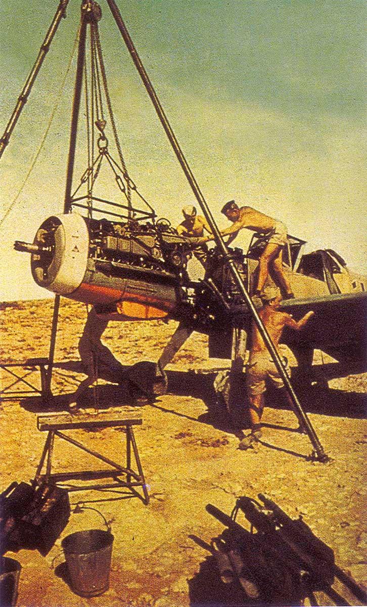 Bf 109F JG27 North Africa 1942 02