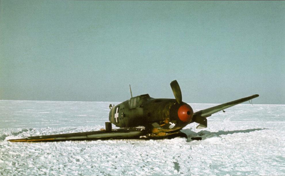 Bf 109F RHAF 101.5 (V +08) Hungary 1942 03