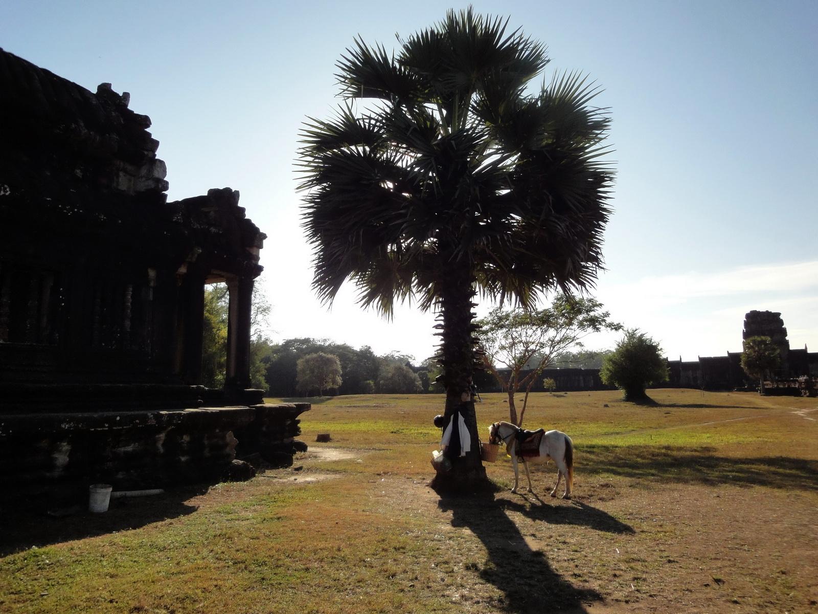 Angkor Wat Khmer architecture external library SW corner 07