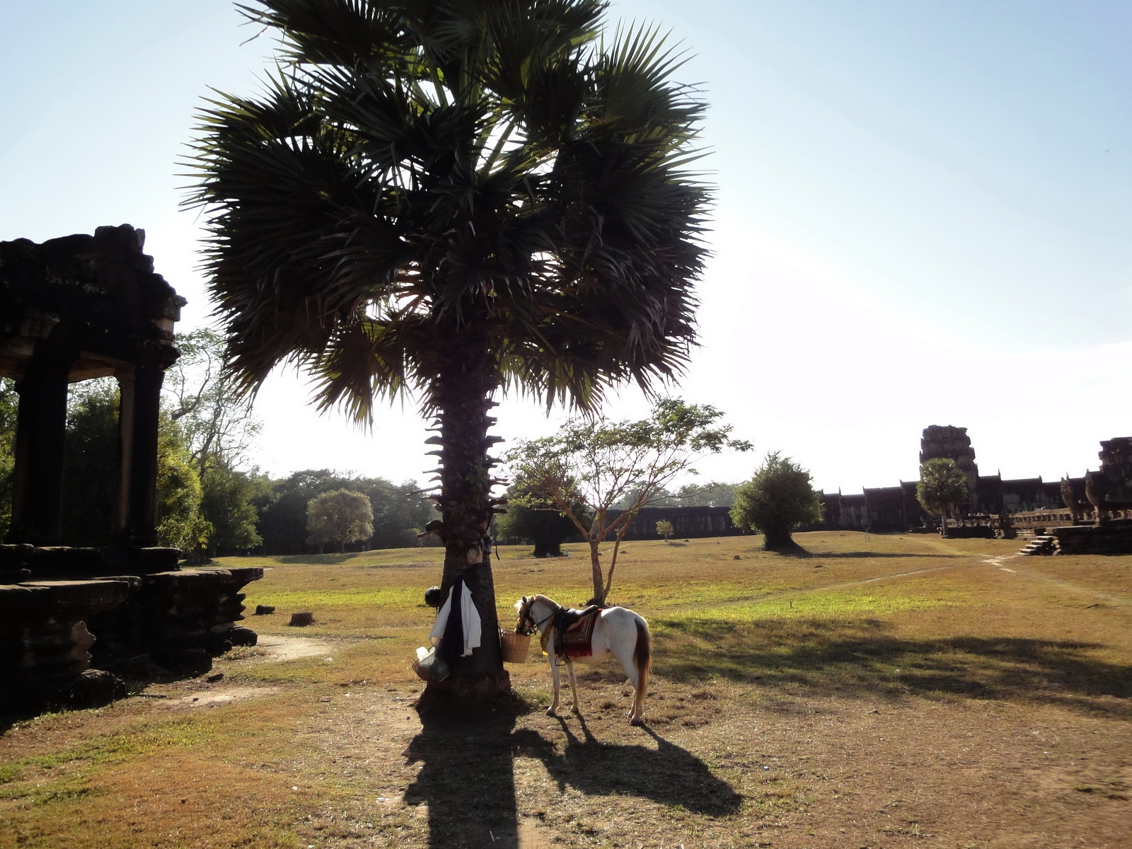 Angkor Wat Khmer architecture external library SW corner 09