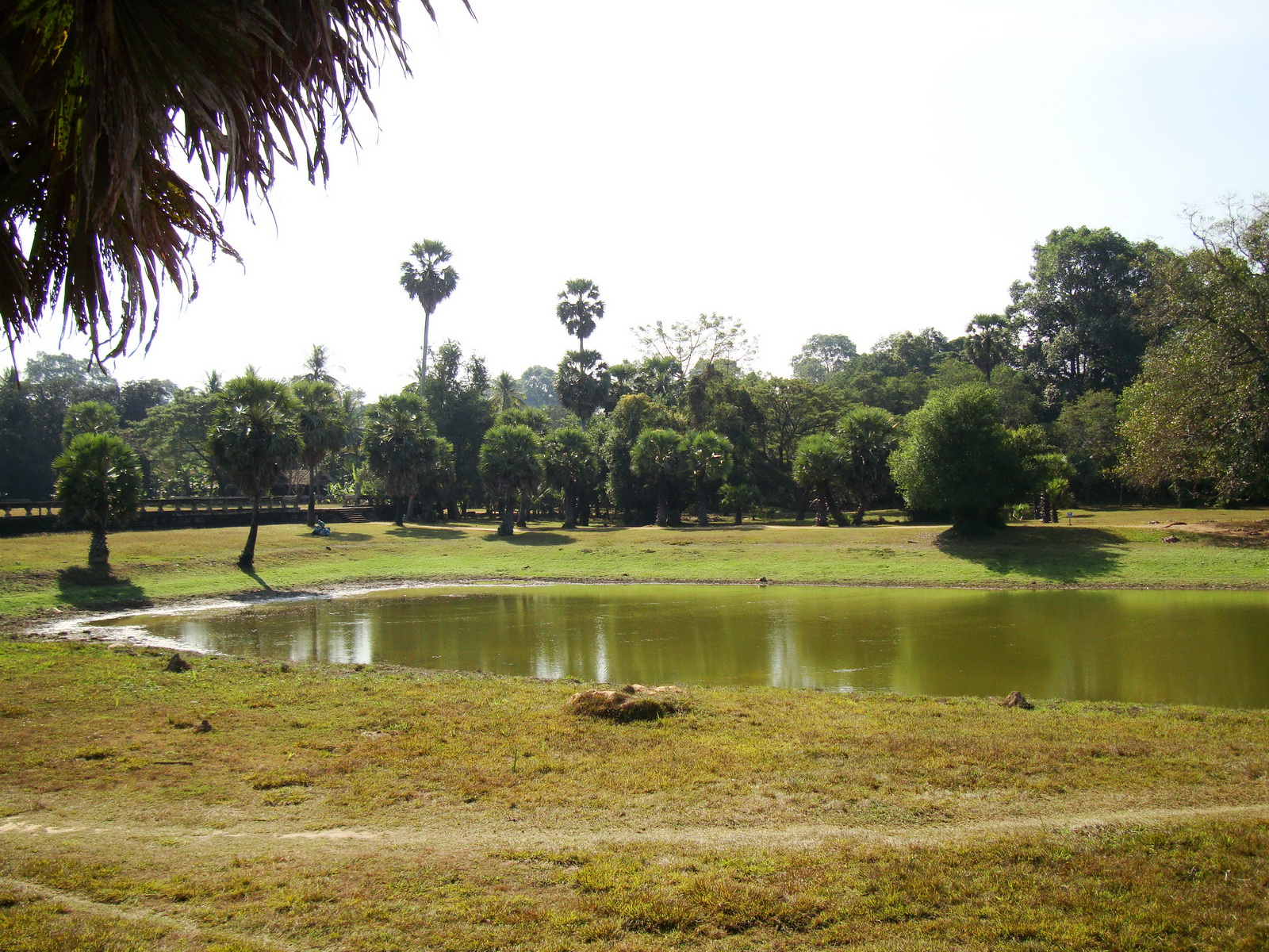 Angkor Wat SW area library pond looking south 01