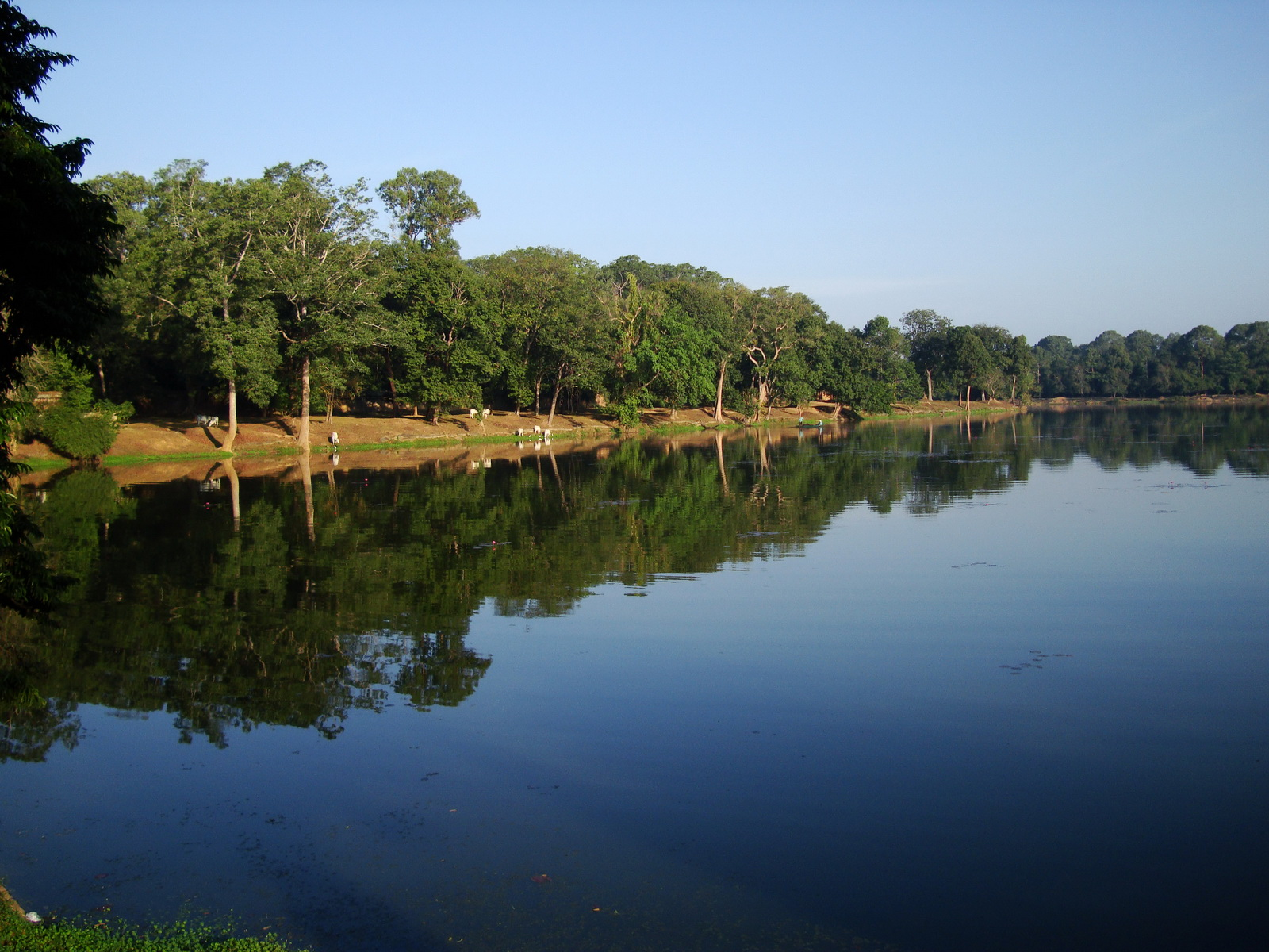 Angkor Wat approaches outer eastern Gopura moat Angkor Siem Reap 01