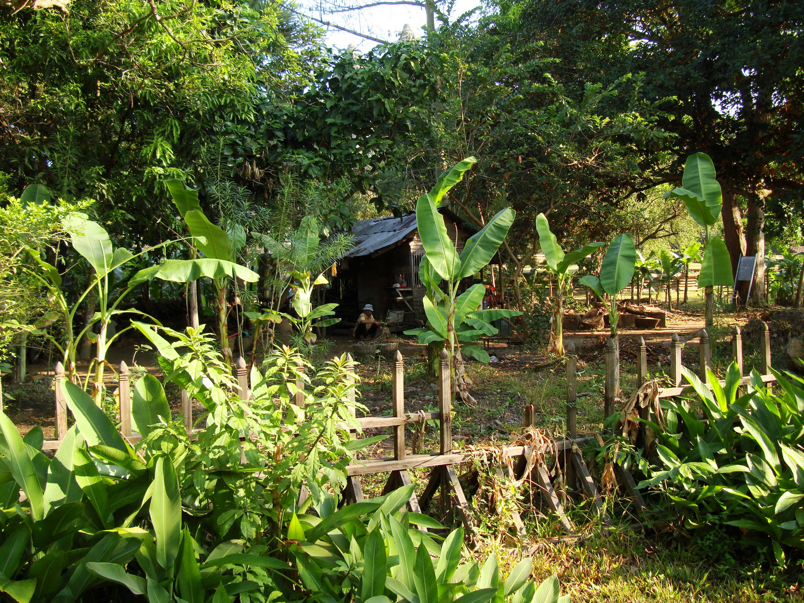 Buddhist monastery area Angkor Wat Seim Reap 03