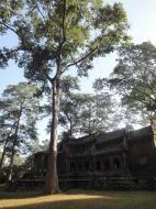 Asisbiz Angkor Wat approaches outer eastern Gopura Angkor Siem Reap 09
