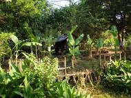 Asisbiz Buddhist monastery area Angkor Wat Seim Reap 03
