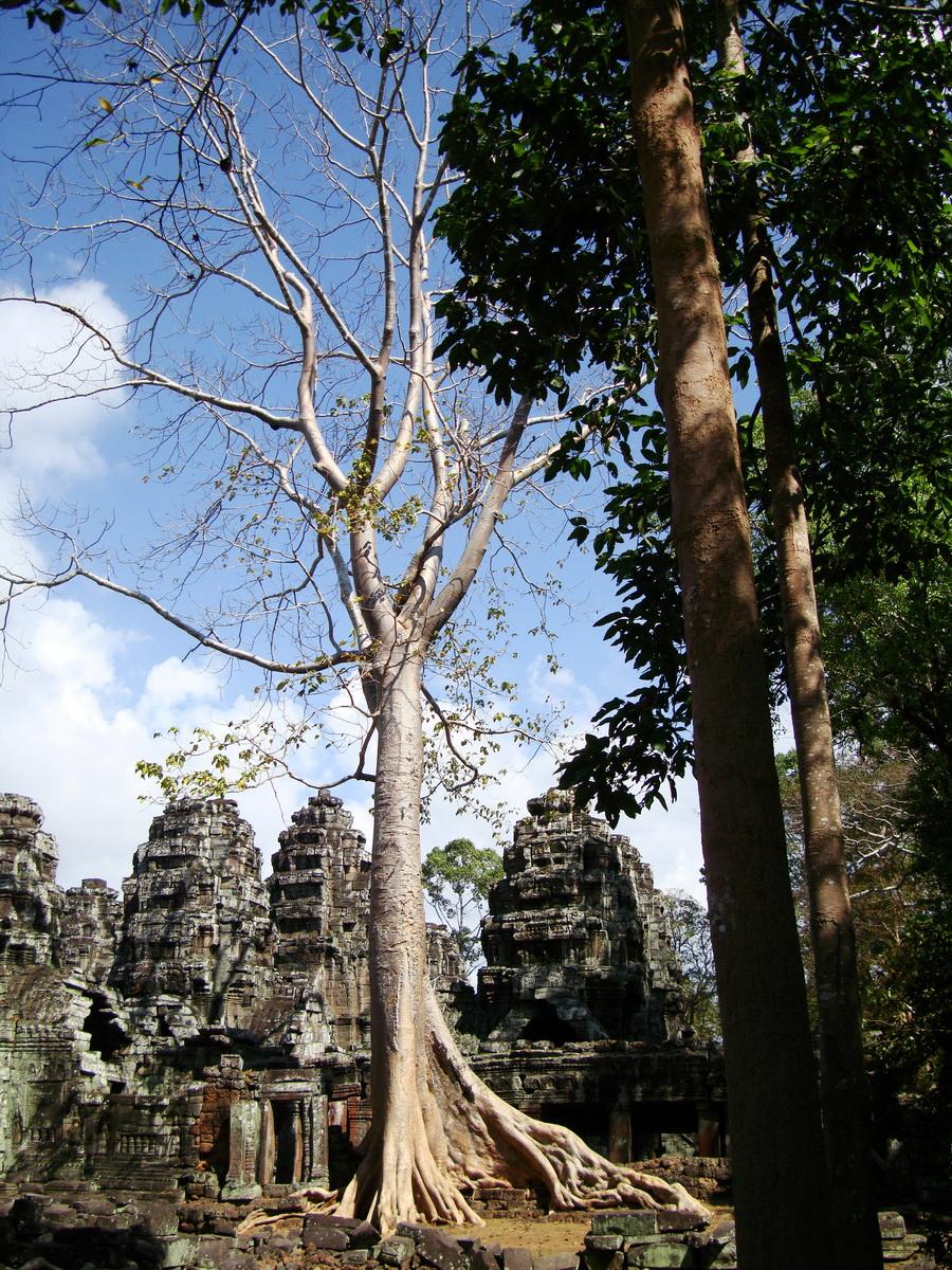 D Banteay Kdei Temple Gopuram Western Entry towers Angkor 03