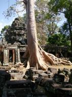 Asisbiz D Banteay Kdei Temple Gopuram Western Entry towers Angkor 02