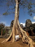 Asisbiz D Banteay Kdei Temple western entrance giant tree 04