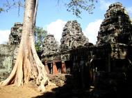 Asisbiz D Banteay Kdei Temple western entrance giant tree 07