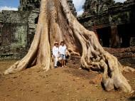Asisbiz D Banteay Kdei Temple western entrance giant tree 08