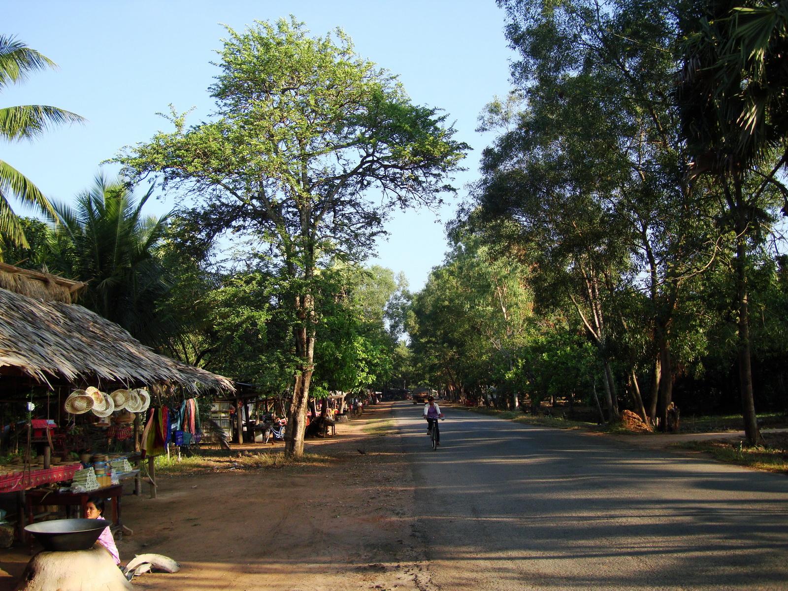 Banteay Srey road side village shops Jan 2010 05