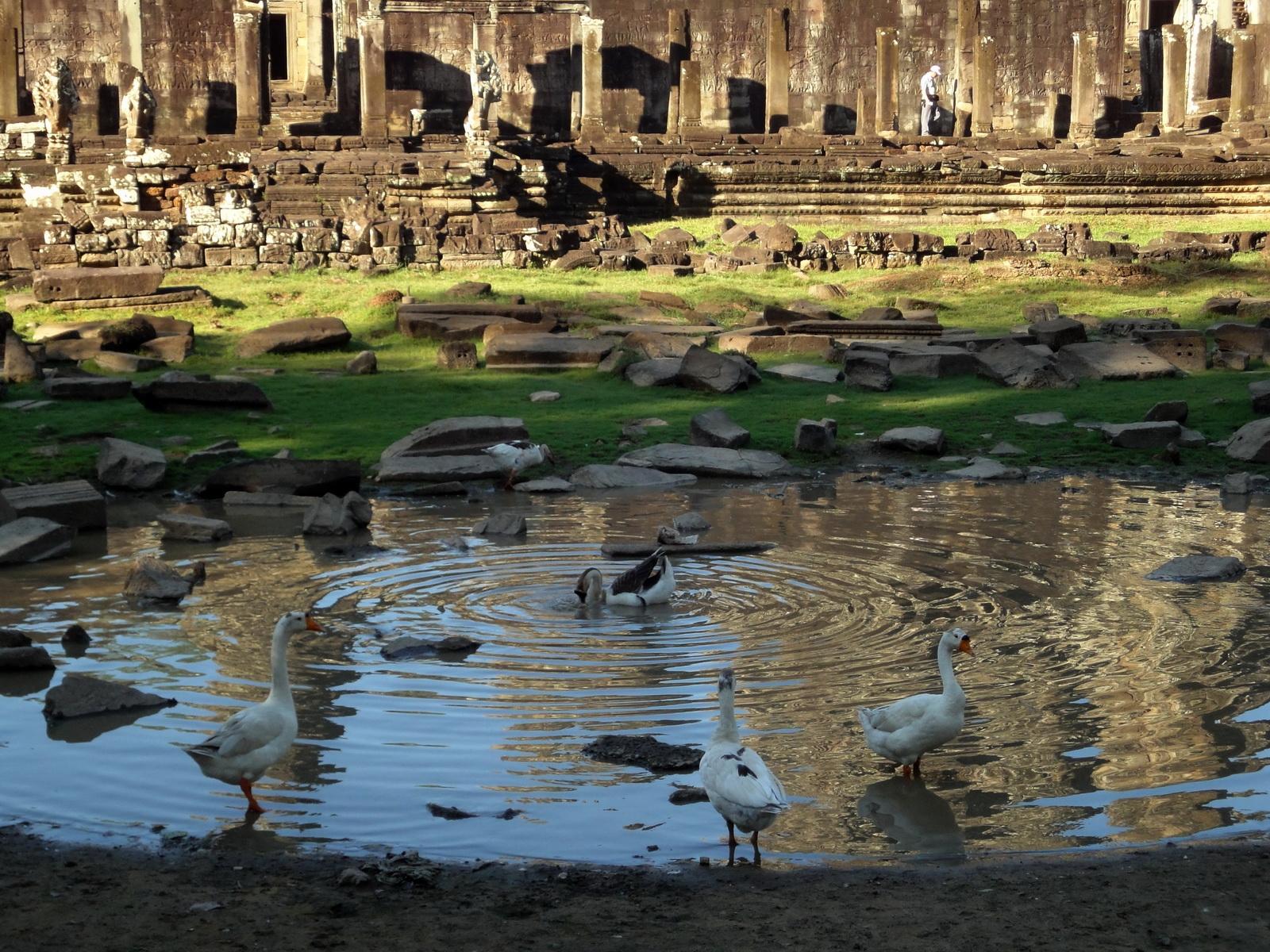 Bayon Temple panoramic views of Northern outer walls Angkor Jan 2010 20