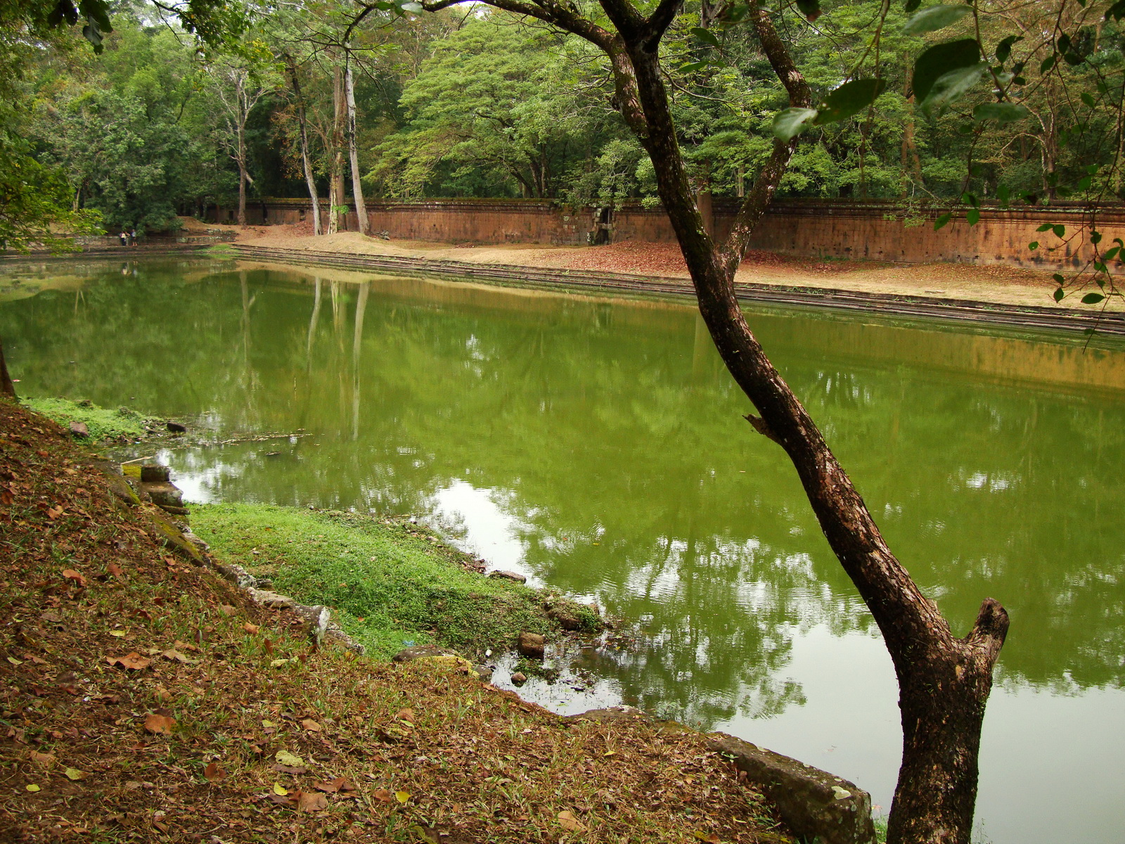 Royal Palace female bathing pond Hindu Khleang style Angkor 06