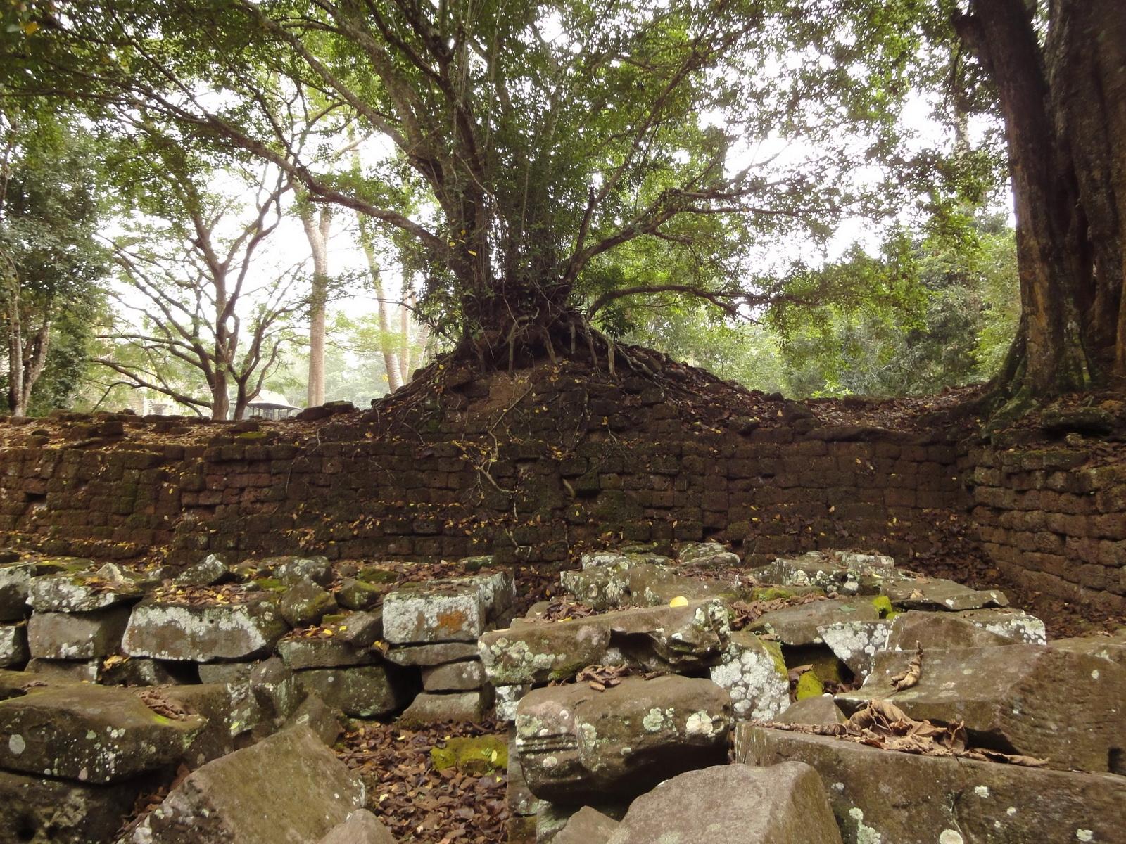 Royal Palace laterite walls Hindu Khleang style Angkor 05