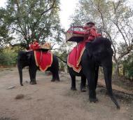 Asisbiz Phnom Bakheng Temple Camdodian elephant ride Angkor 01