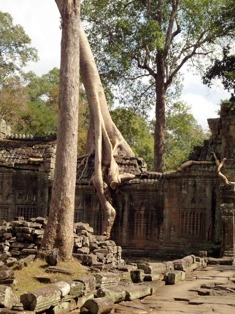 Preah Khan 12th century Khmer Style Eastern Gopura Angkor Thom 11