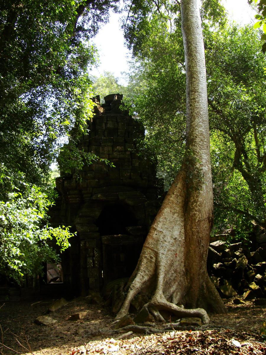 Preah Khan 12th century Khmer Style Southern Gopura Angkor Thom 04