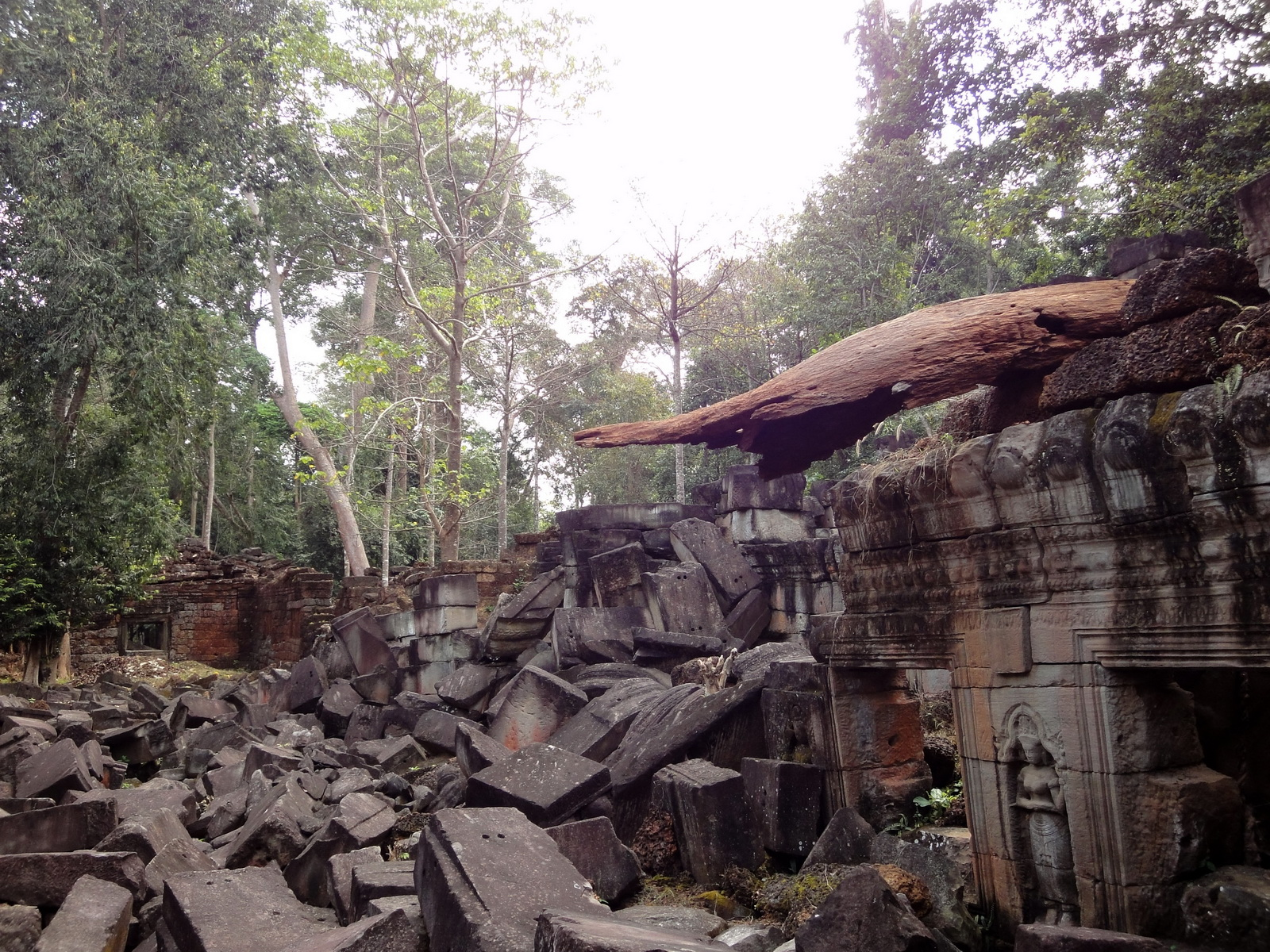 Preah Khan Temple laterite walls overtaken by giant strangler fig trees 10