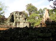 Asisbiz Preah Khan Temple hall of dancers inner Gopura 09