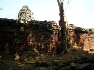 Asisbiz Preah Khan Temple laterite walls overtaken by giant strangler fig trees 06