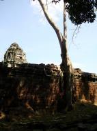 Asisbiz Preah Khan Temple laterite walls overtaken by giant strangler fig trees 07