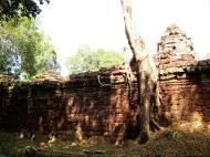 Asisbiz Preah Khan Temple laterite walls overtaken by giant strangler fig trees 08