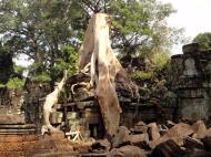 Asisbiz Preah Khan Temple laterite walls overtaken by giant strangler fig trees 12