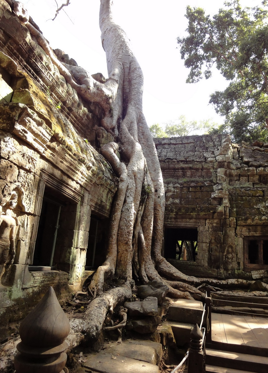 Ta Prohm Temple Rajavihara Tomb Raider NW corner Gopura 4 East 02