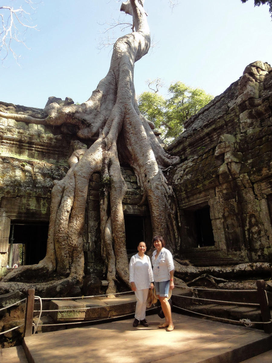 Ta Prohm Temple Rajavihara Tomb Raider NW corner Gopura 4 East 03