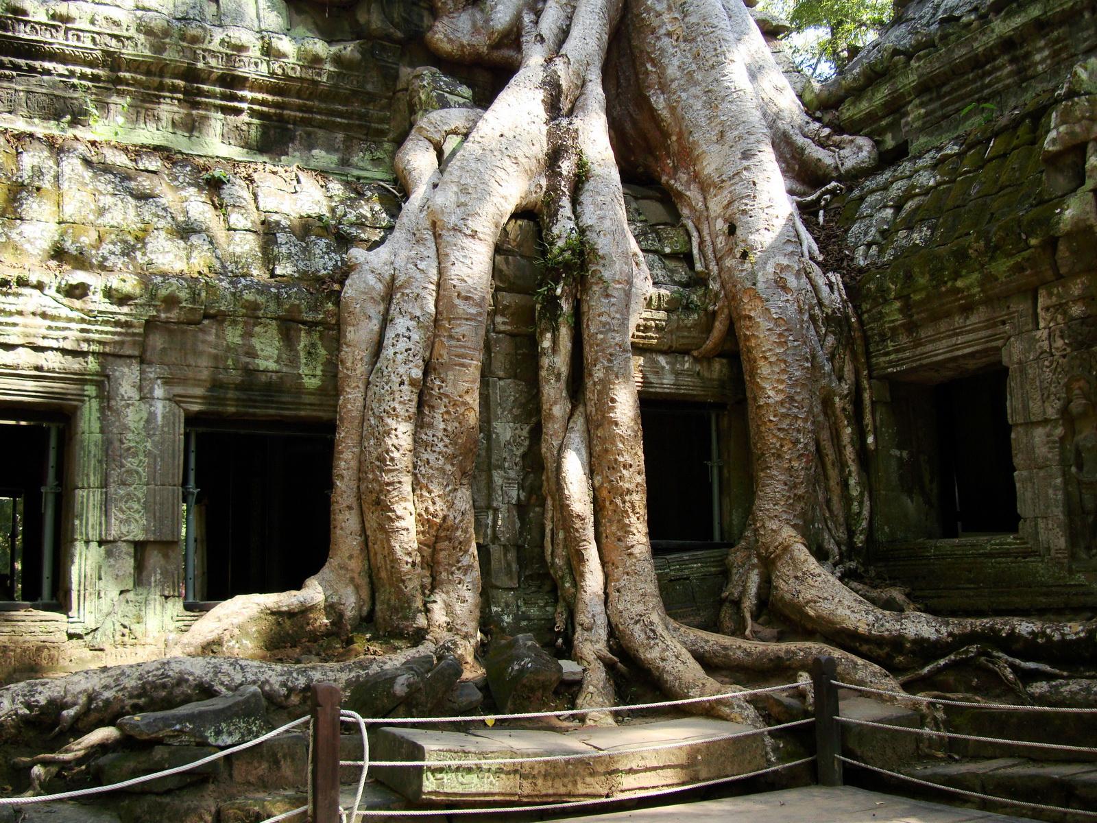 Ta Prohm Temple Rajavihara Tomb Raider NW corner Gopura 4 East 04