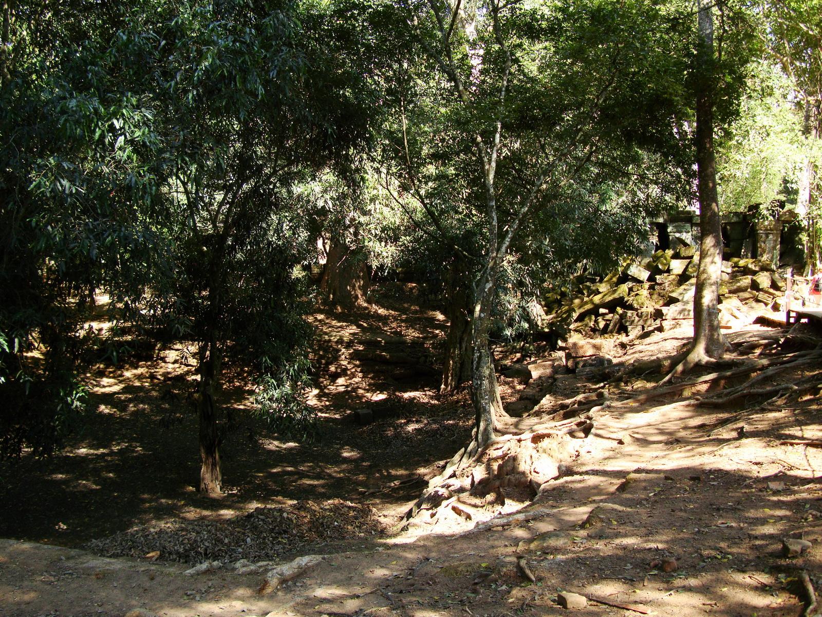 Ta Prohm Temple Rajavihara Tomb Raider W 4 Gopura area 01