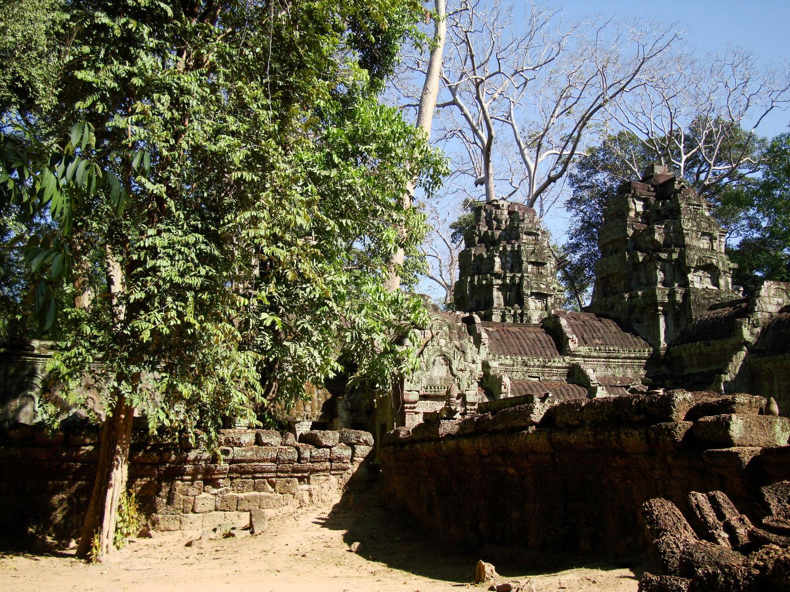 Ta Prohm Temple Rajavihara Tomb Raider W 4 Gopura area 05