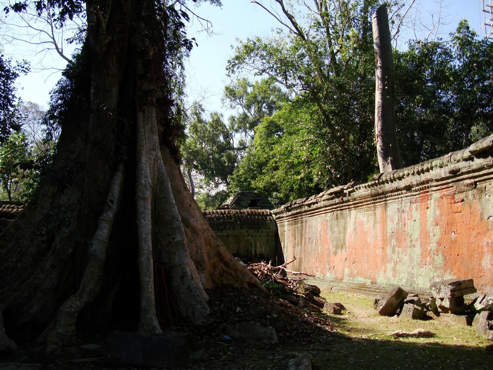 Ta Prohm Temple Rajavihara Tomb Raider inner laterite walls 03