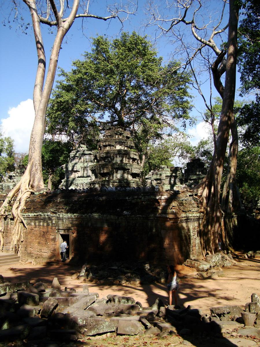 Ta Prohm Temple Tomb Raider giant iconic trees dwaf the gopura 07