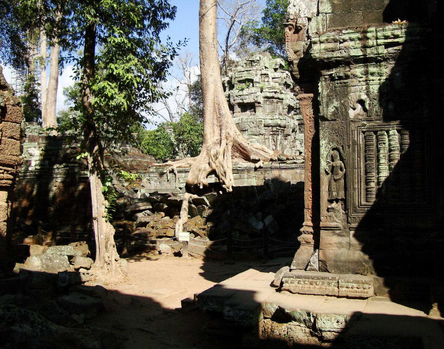 Ta Prohm Temple Tomb Raider giant iconic trees dwaf the gopura 11