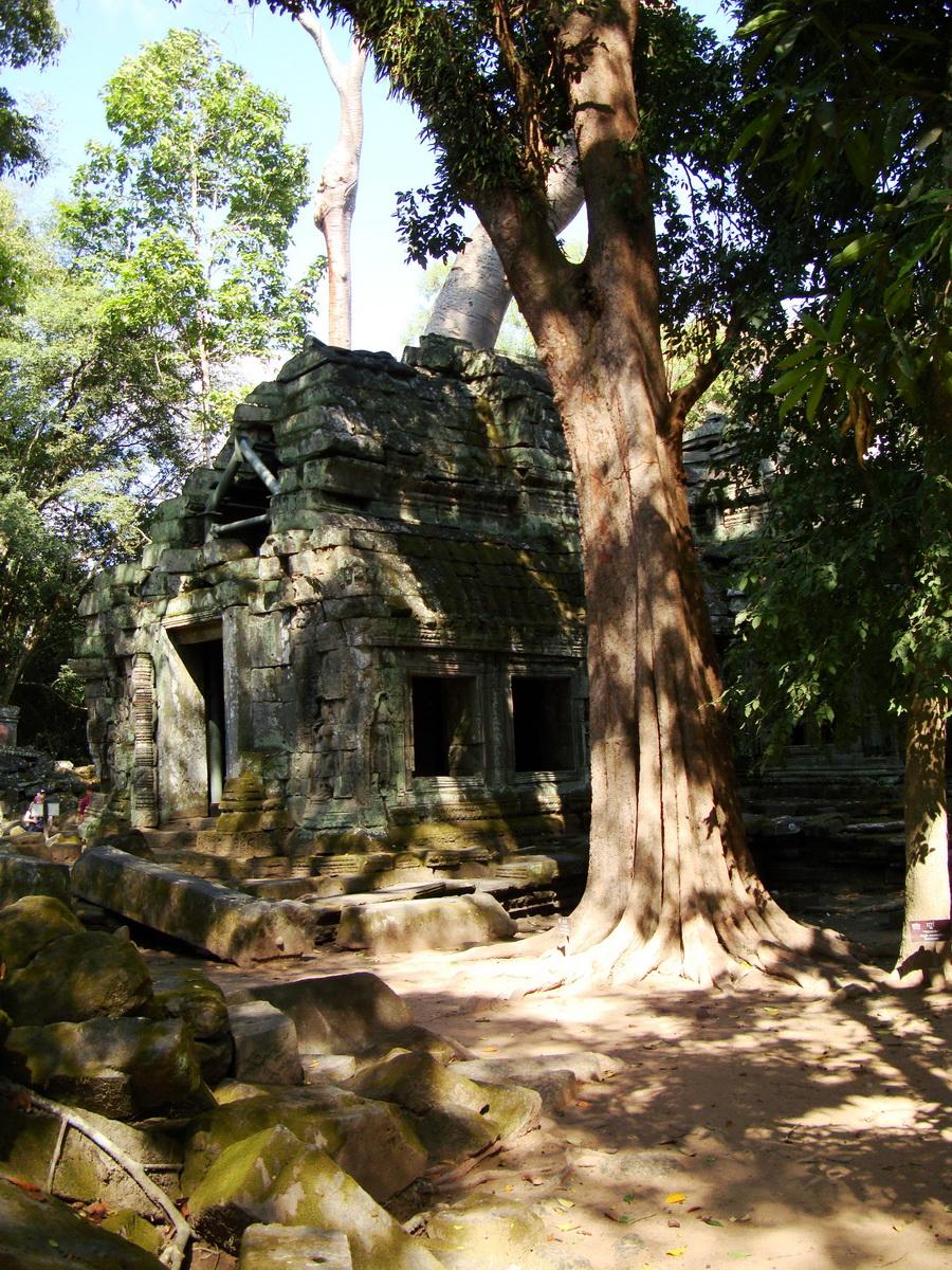Ta Prohm Tomb Raider Bayon architecture Gopura 4 East entrance 15