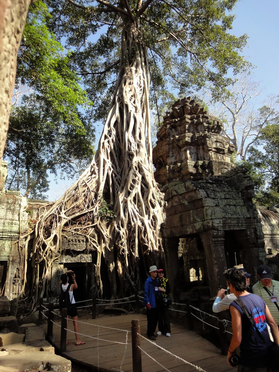Ta Prohm Tomb Raider Bayon architecture central sanctuary area 03