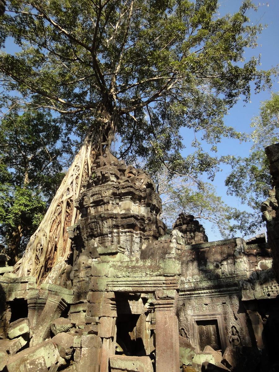 Ta Prohm Tomb Raider Bayon architecture central sanctuary area 06