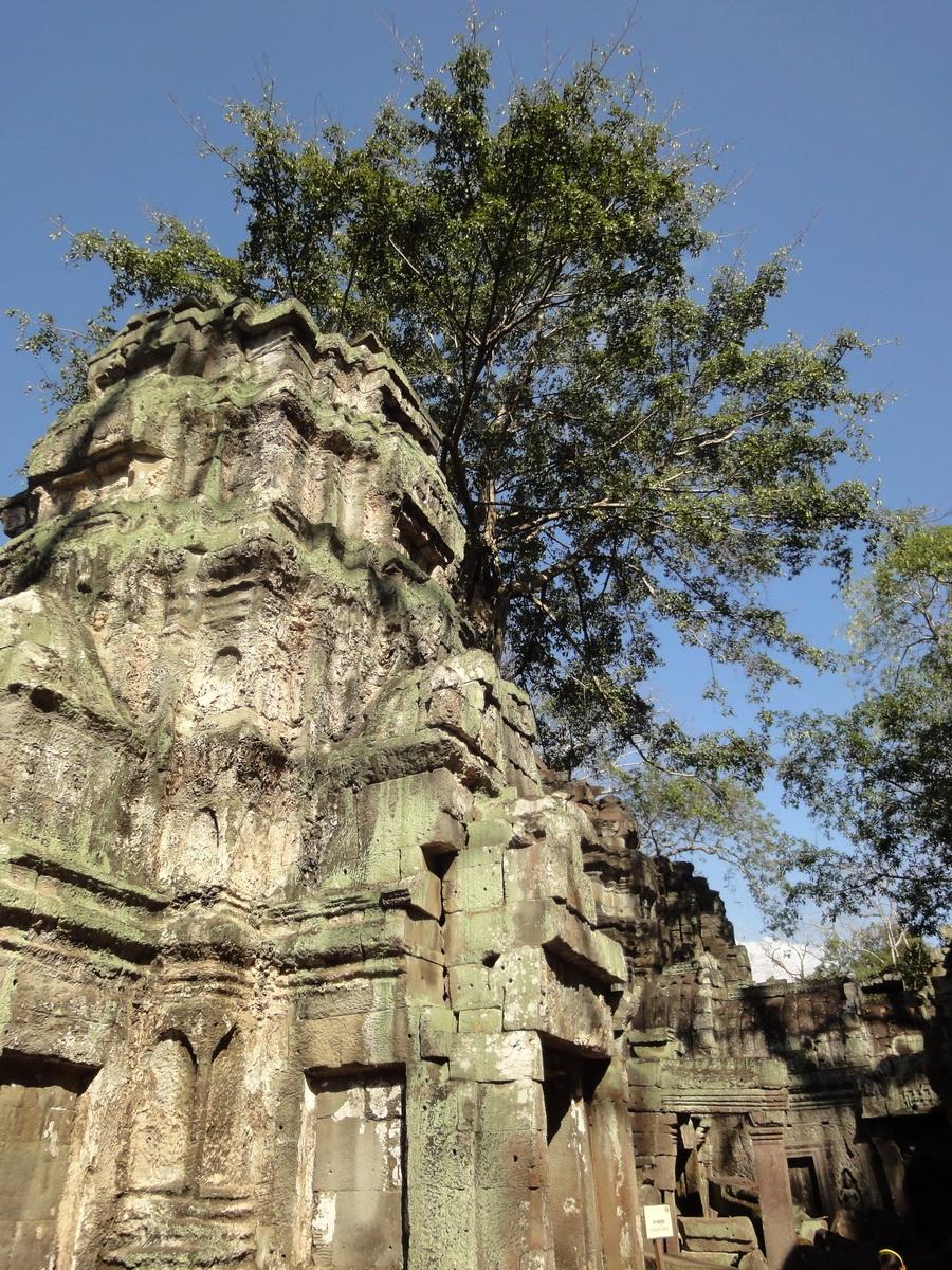 Ta Prohm Tomb Raider Bayon architecture central sanctuary area 08