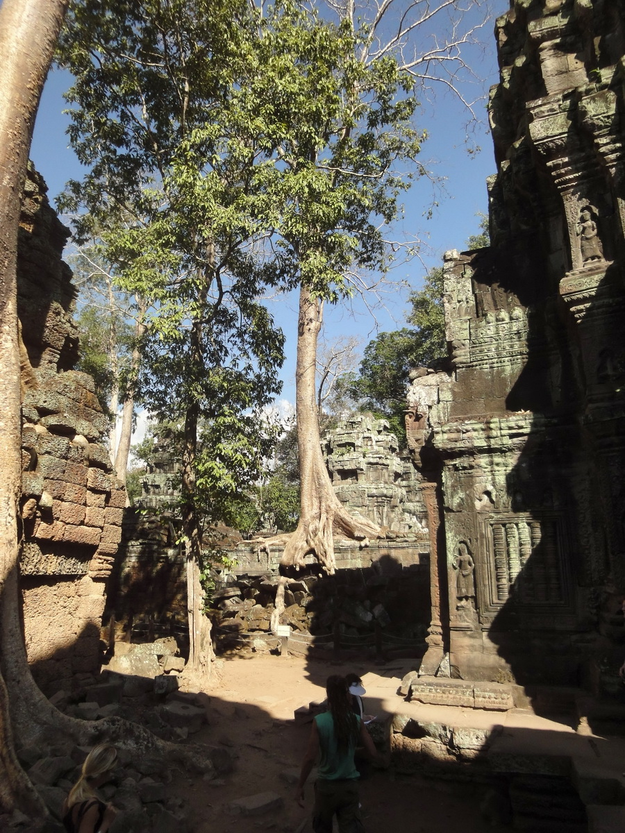 Ta Prohm Tomb Raider Bayon architecture central sanctuary area 11