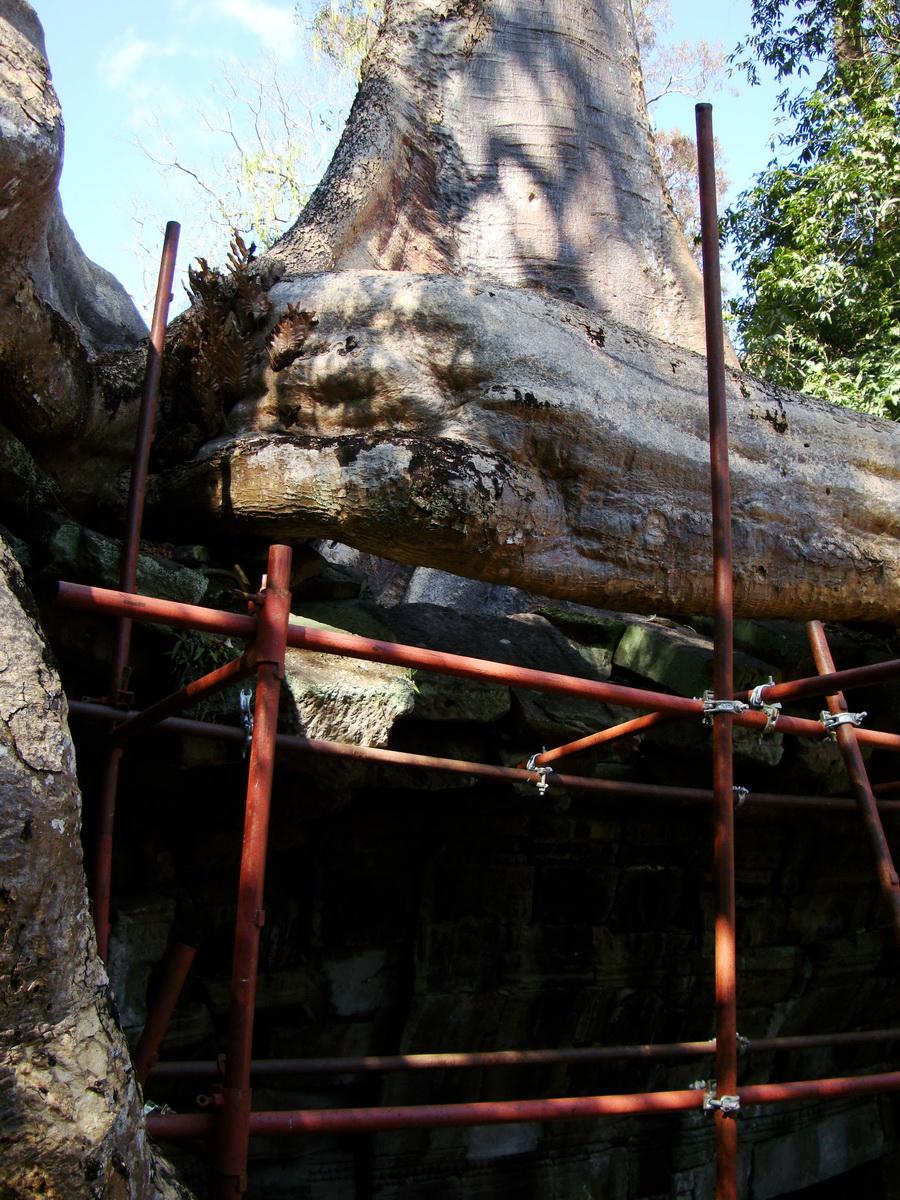 Ta Prohm Tomb Raider Bayon architecture central sanctuary area 18