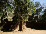 Asisbiz Ta Prohm Temple Rajavihara Tomb Raider W 4 Gopura area 04