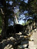 Asisbiz Ta Prohm Temple Rajavihara Tomb Raider fallen masonry 09