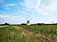 Asisbiz Ecology farming plays an important part of the local economy Bornholm Denmark July 2012 01