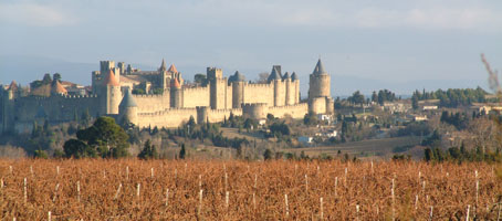 Carcassonne Vineyards