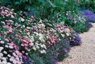 Asisbiz Travel to Claude Monet Chateau garden in Giverny France 18