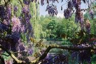 Asisbiz Travel to Claude Monet Chateau garden in Giverny France 22